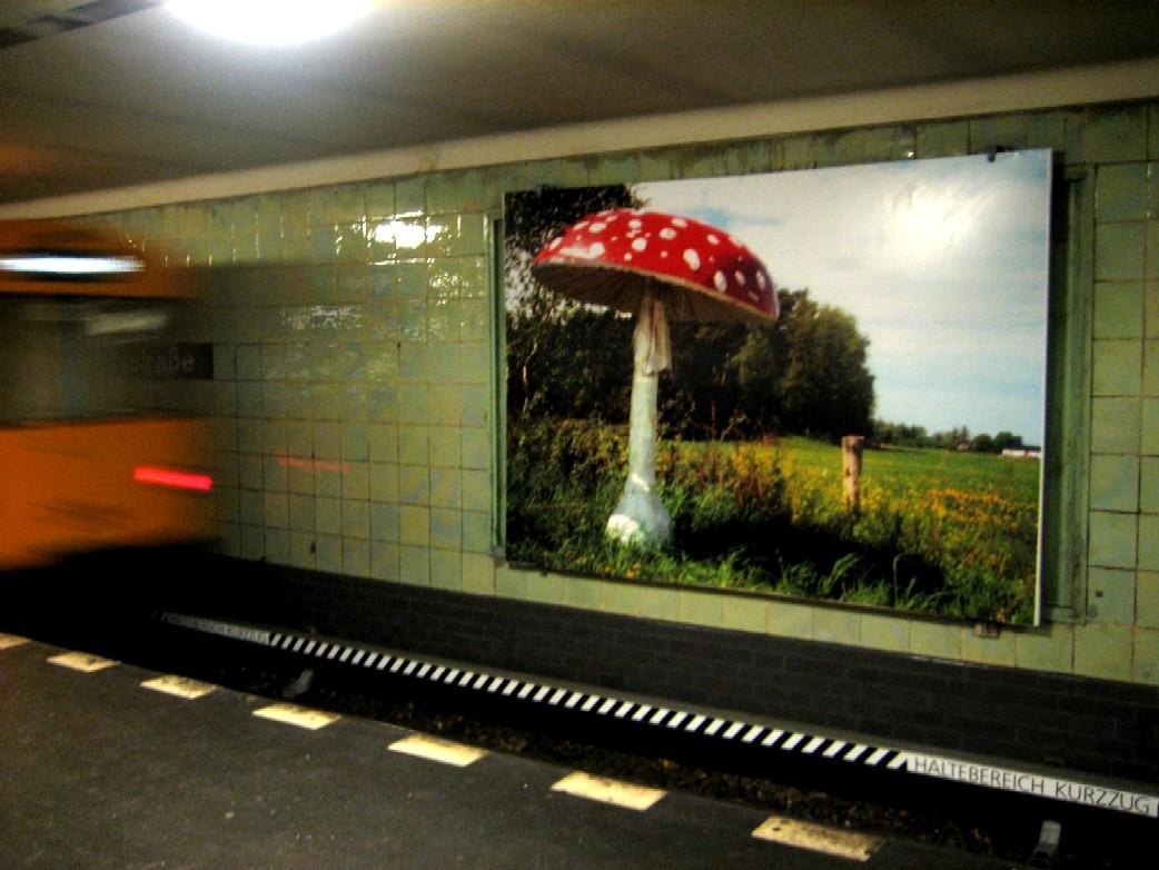 Ingrid Schuetz. Glückspilz. U-Bahn Berlin