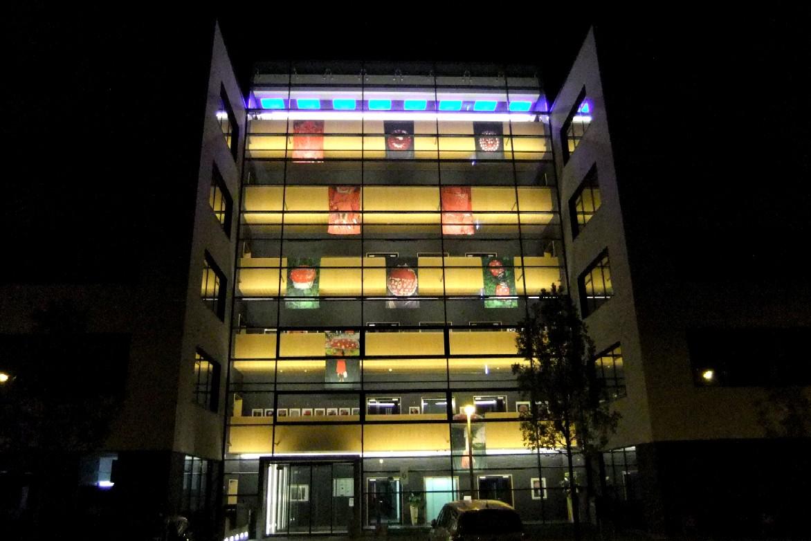 Ingrid Schuetz. Installation in Bürofassade.TTR Reutlingen.2011